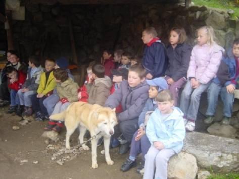 Cani-rando et Nature en classe