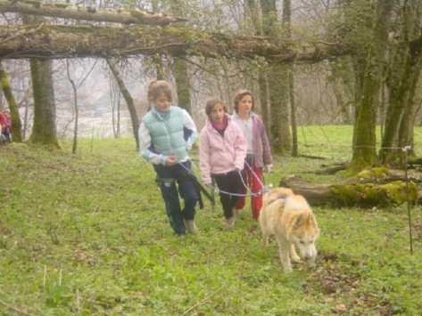Classe Cani-Rando découverte Nature