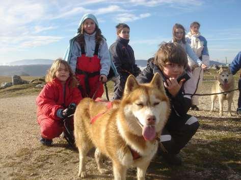 groupe scolaires cani-Rando
