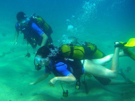 activité découverte de la plongée
