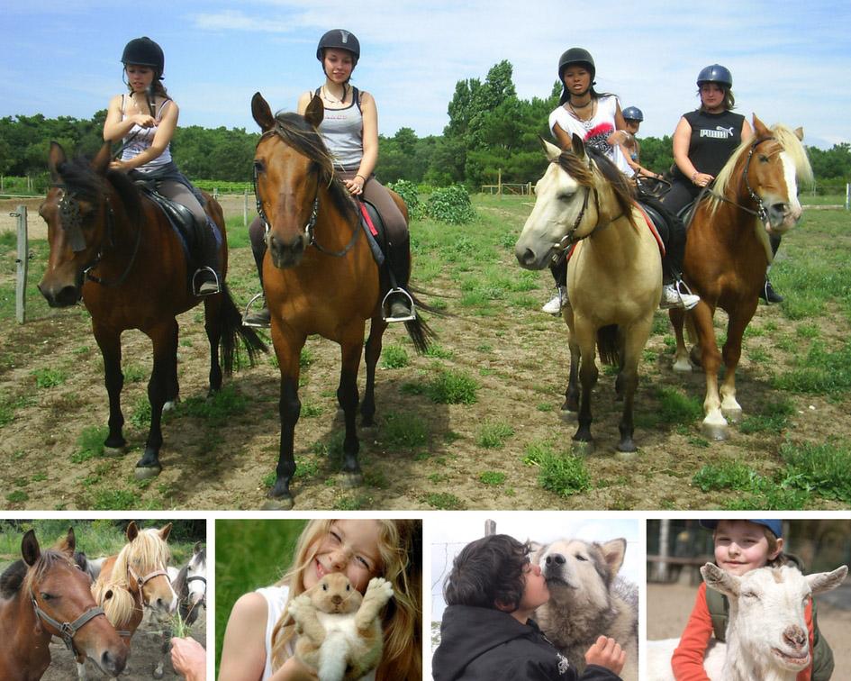 Colonies de vacances enfants et ados animaux