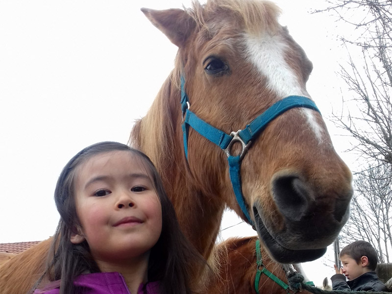 Colonie de vacances équitation enfants