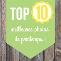 Top 10 meilleures photos de printemps 2018