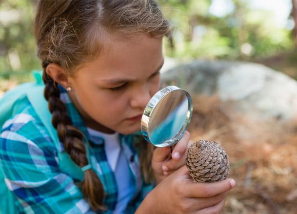 Jeune fille observant une pomme de pin à travers une loupe