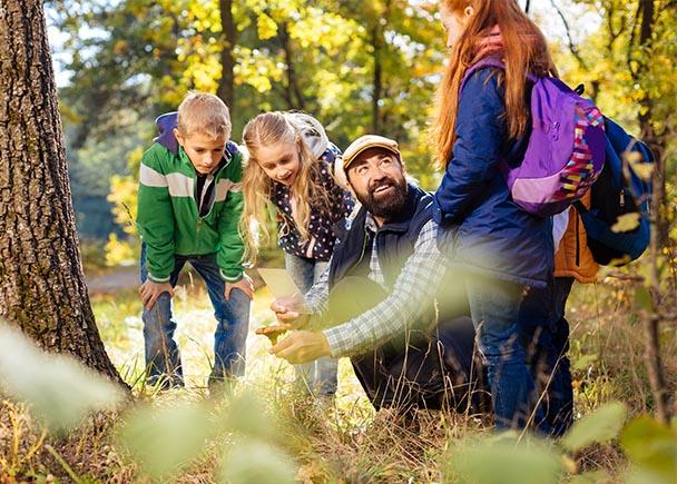 Accompagnateur montrant un champignon aux enfants en classe découverte