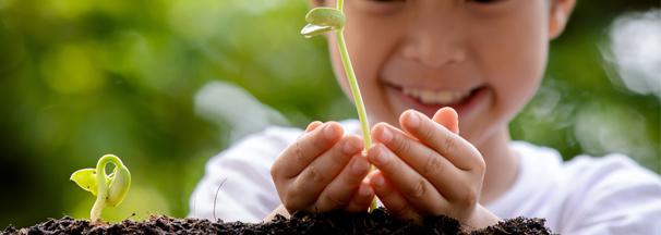 Enfant qui fait pousser des plantes