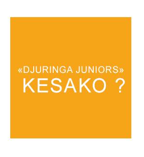 Cercle jaune signification Djuringa Juniors
