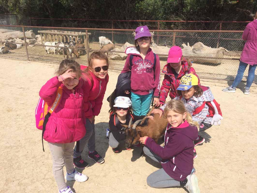 Enfants au zoo en colonie de vacances d'été