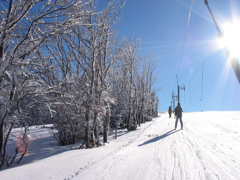 Enfants sur les pistes de colonie de vacances à la montagne vacances de février