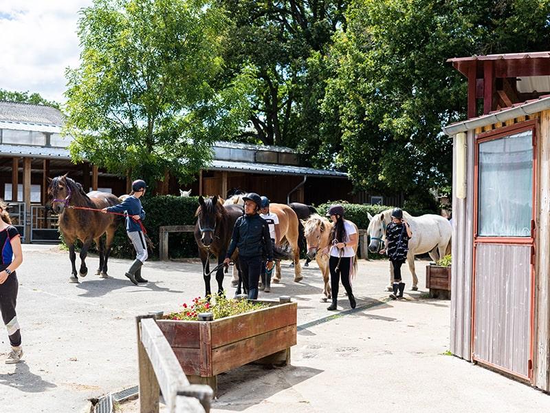 Vue sur les box de chevaux en colo de vacances au domaine de l'Espérance