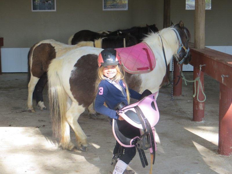 Filette apprenant à s'occuper de son poney en colonie de vacances cet été