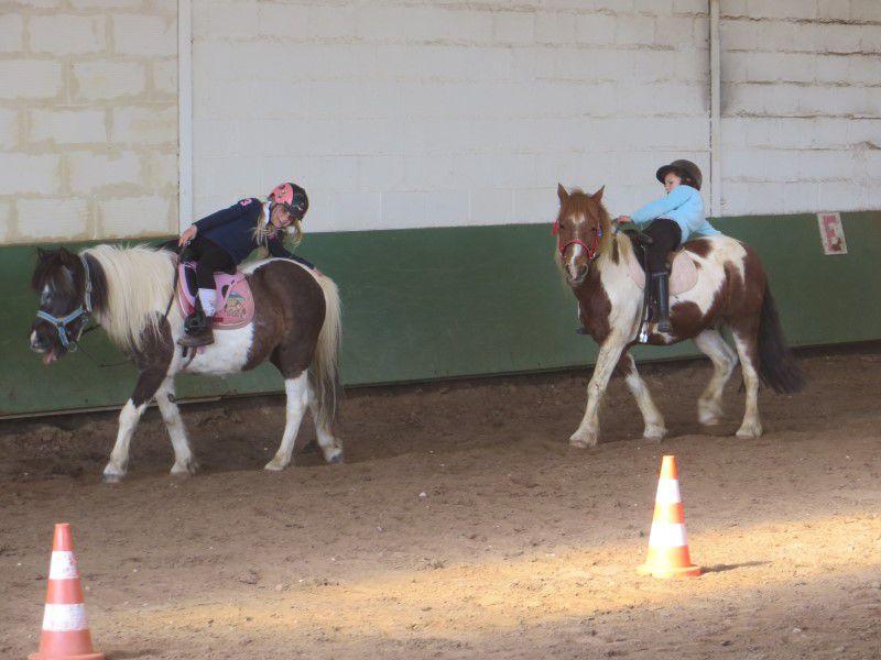 Jeunes filles apprenant la voltige à poney en colo équitation