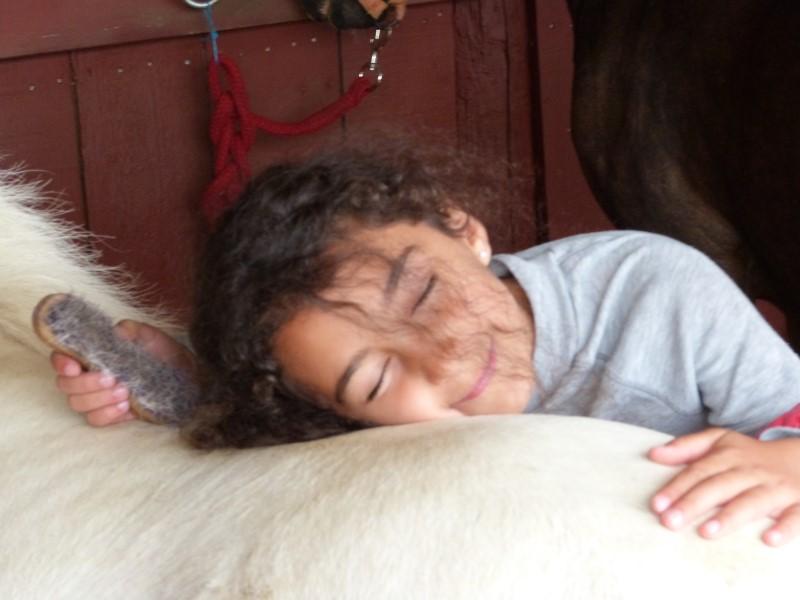 Jeune fille apprenant à prendre soin des chevaux en colonie de vacances cet été