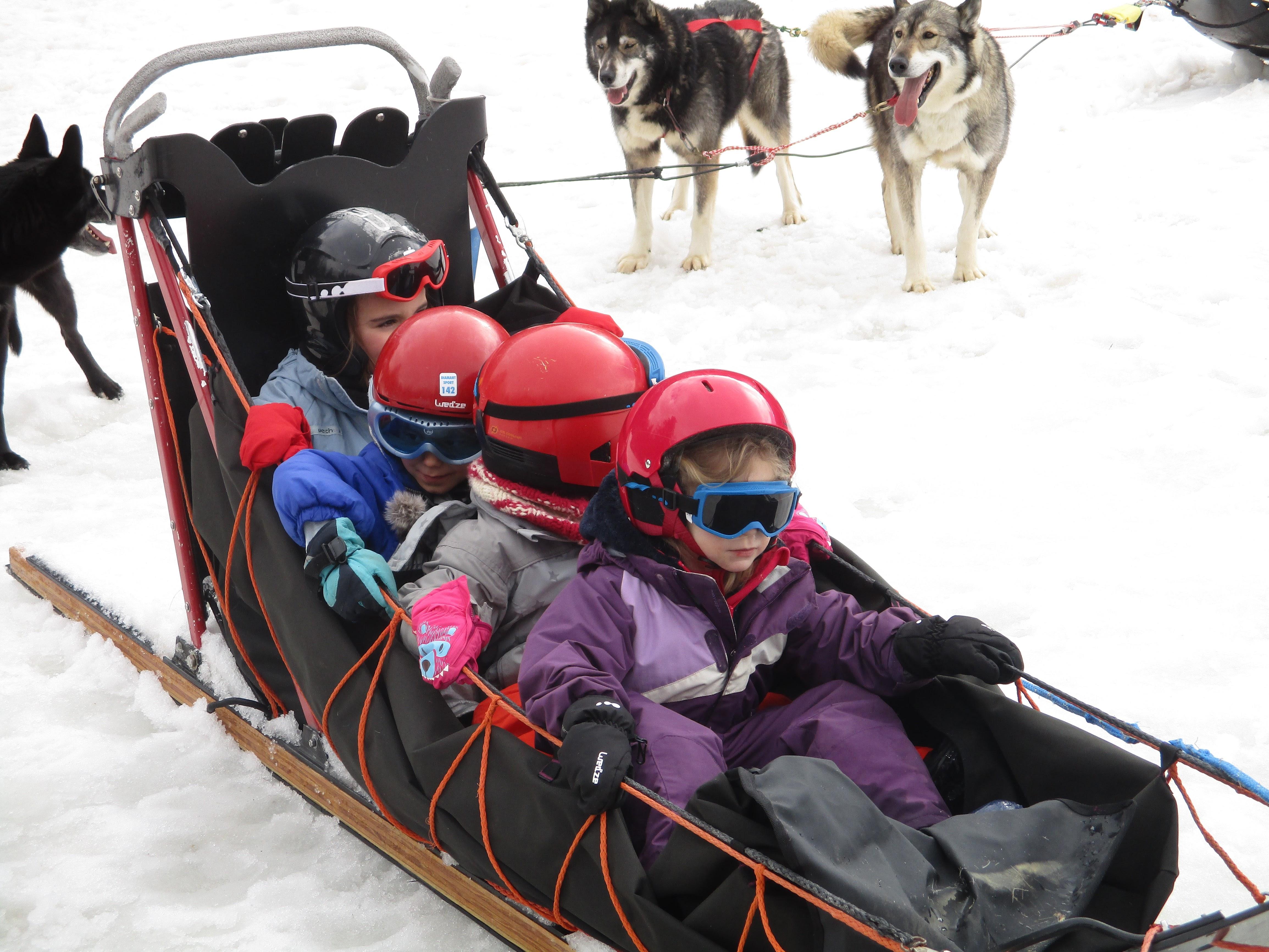Groupe d'enfants en balade en traineaux en colonie de vacances